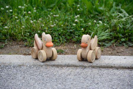 Roller Ducks.jpg